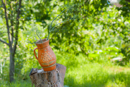 Ancient traditional Ukrainian clay pot with branch of dill plant standing on a cut tree in summer garden Stock Photo