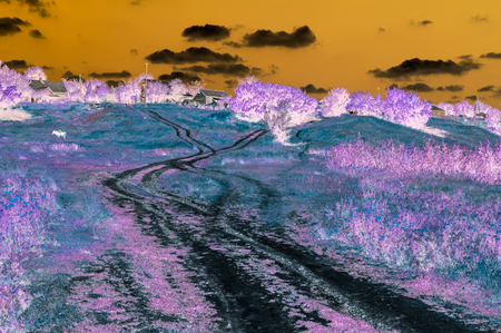 Abstract digital picture of landscape with country road leading to houses on the hill in parallel universe Archivio Fotografico - 108812456