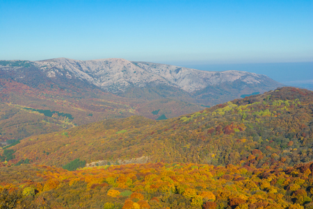 Landscape in Crimean mountains covered with beech forest at fall season