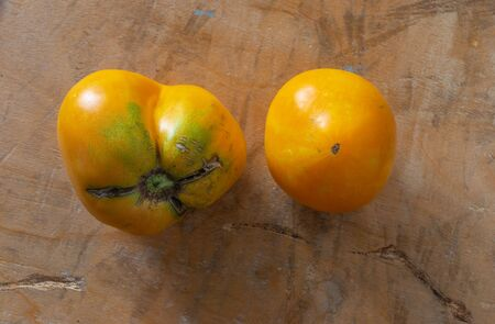 Pair of organic yellow tomato on a scratched wooden surface close-up Stock Photo