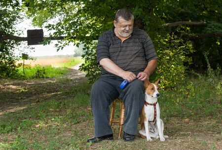 Senior man admiring his basenji dog while sitting on a stool next to his four-legged friend  in summer park