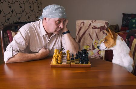Caucasian mature man wearing bandana hard looking on his basenji dog rival while sitting at the table in a chess family tournament