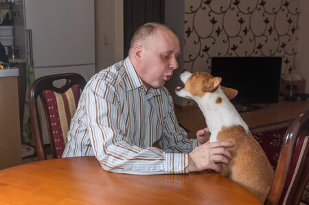 Basenji dog having hard conversation with master sitting at the table. The bad-mannered dog shows its last argument - to raise it's voice.
