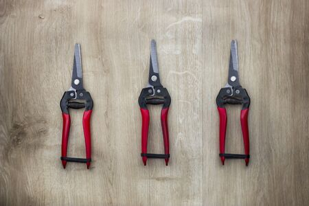 Garden pruner or scissors with red handles on wooden table. View from above.