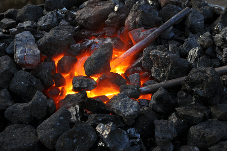 farriery: close-up  of a furnace,metal is heated in the forge on coals with hot flaming coal
