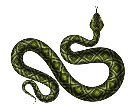 Ilustración de vector de pitón verde realista. Serpiente tropical aislada sobre fondo blanco