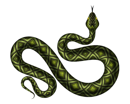 Realistic green python vector illustration. Isolated tropical snake on white background Illustration