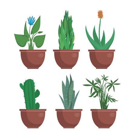 set of cartoon indoor plants vector illustration Vektorové ilustrace