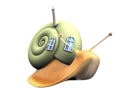 amphibia: snail with eco home  Stock Photo