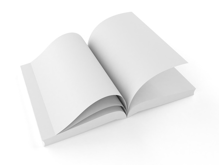 blank book Stock Photo - 20538778