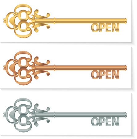 Keys concept set. Key collection gold, silver, copper. Open text. Vector illustration. eps 10 Vector