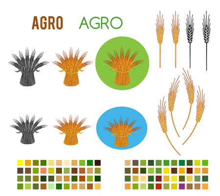 Set Editable icon - Includes silhouette cereal sheaf, spica spikes & organic agriculture with colors style background theme, isolated on white background. Vector illustration eps10 Elements design