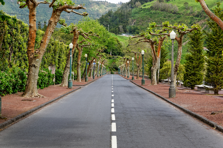 Road in Furnas photo