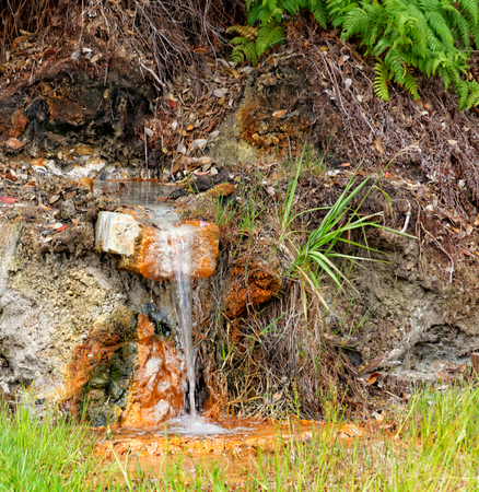 vulcanology: Geothermal hot water in Furnas on the island of Sao Miguel