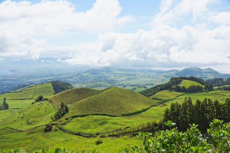 agriculture azores: Landscape with cows, Sao Miguel, The Azores Islands, Portugal Stock Photo