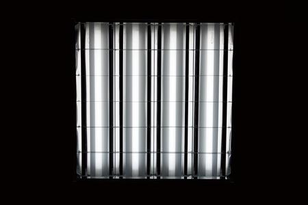 黒の背景に蛍光ランプ 写真素材
