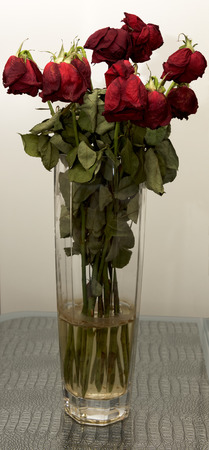 wilted: Wilted roses in a glass vase