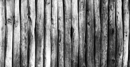 stockade: Palisade stockade palings logs. Abstract background, old, ancient. Black and white image.