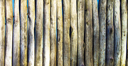 stockade: Palisade stockade palings logs. Abstract background, old, ancient.