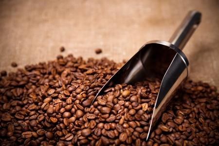 coffee sack: steel scoop in coffee beans Stock Photo