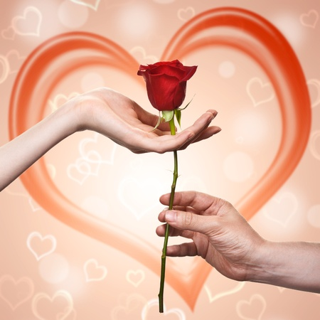man s: man s hand giving a rose to a woman who carefuly takes it