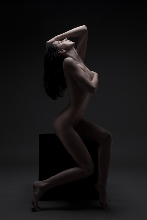 Fashion Portrait Of Naked Woman With Beautiful Slim Body Stock Photo - 12638510