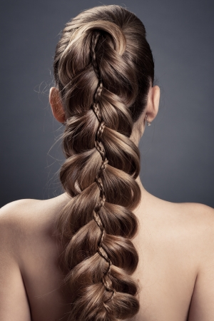 plait: Long Brown Hair. Back View