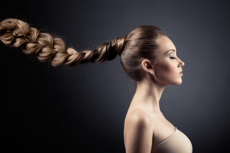 plait: Beautiful Woman Portrait. Long Brown Hair  Stock Photo