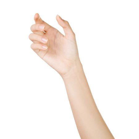 分離上の白い背景を持つ美しい女性の手