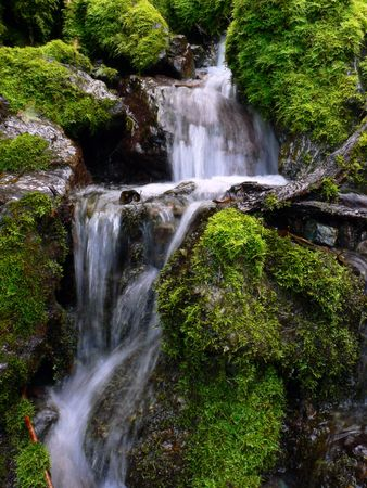 fresh and clear water cascade between green mossy stones