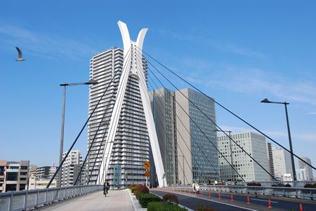 Chuo-Ohashi Bridge in Tokyo, Japan with flying seagull and road traffic