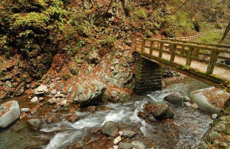 clear mountain river under wooden bridge in autumnal japanese forest, Tochigi prefecture, Japan photo