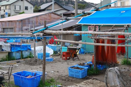fishnets: fisherman village backyard with drying fishnets; focus on red fishnets and wooden poles
