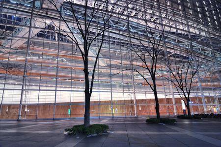 pared iluminada: callej�n de �rboles esc�nica en virtud de la pared iluminada de vidrio dentro de famosa Foro Internacional de Tokio exposici�n comercial zona centro, Jap�n