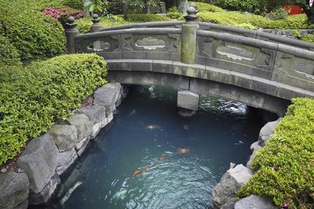 ponte giapponese: ponte di pietra panoramica sull'acqua blu con pesci rossi nel giardino di pietra giapponese Archivio Fotografico