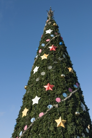 huge christmas tree: big Christmas tree with blue sky background Stock Photo