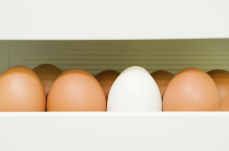 fragment of refrigerator container full of red eggs with white one photo