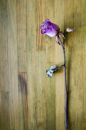 pink dried rose lays on the weathered wooden table top photo