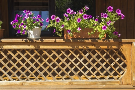 fragment of wooden balcony fence with scenic flowerbed by summertime photo