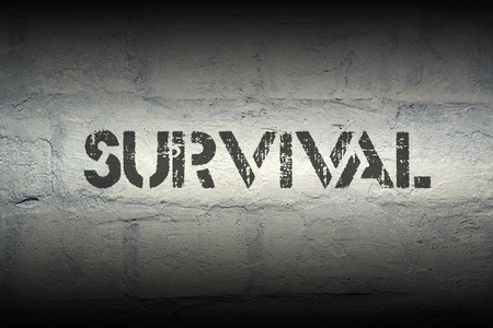 survival: survival stencil print on the grunge white brick wall