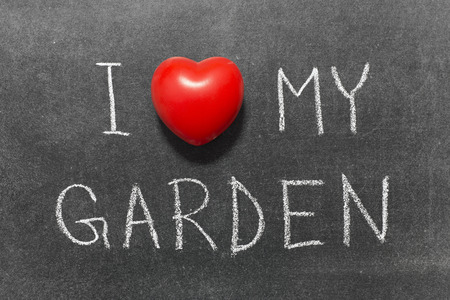 i like my school: I love my garden phrase handwritten on school blackboard