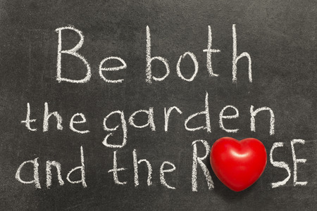 be both the garden and the rose proverb handwritten on blackboard photo