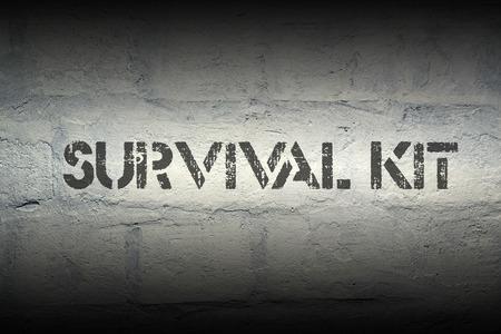 survival kit stencil print on the grunge white brick wall Stock Photo