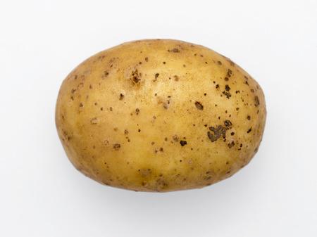 raw potato: raw potato tuber isolated on white background