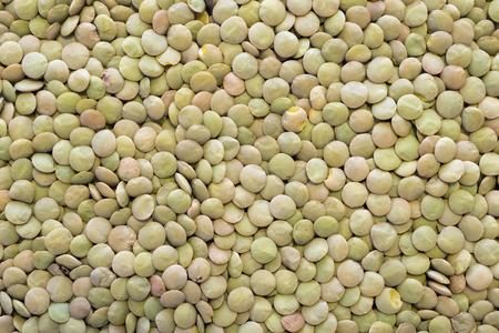 green lentil: many dry green lentil seeds background Stock Photo