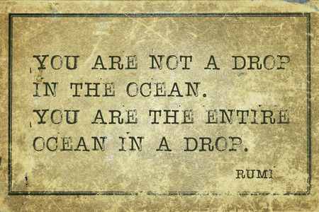You are not a drop in the ocean - ancient Persian poet and philosopher Rumi quote printed on grunge vintage cardboard