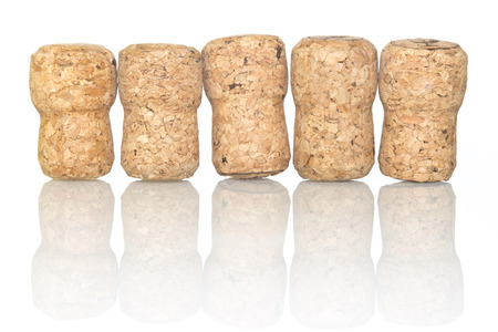 corcho: fila de botellas de champán aislado en la superficie reflectante blanca Foto de archivo