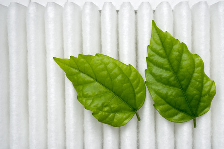 purity conceptual image with green fresh leafs on white air filter surface