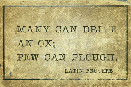 proverb: Many can drive an ox; few can plough - ancient Latin proverb printed on grunge vintage cardboard