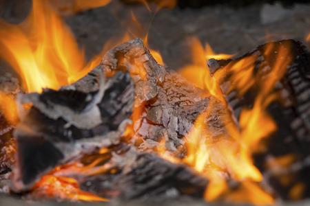 incandescent: incandescent coal in bonfire closeup shot Stock Photo
